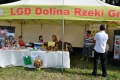 swieto_truskawki_2012-114