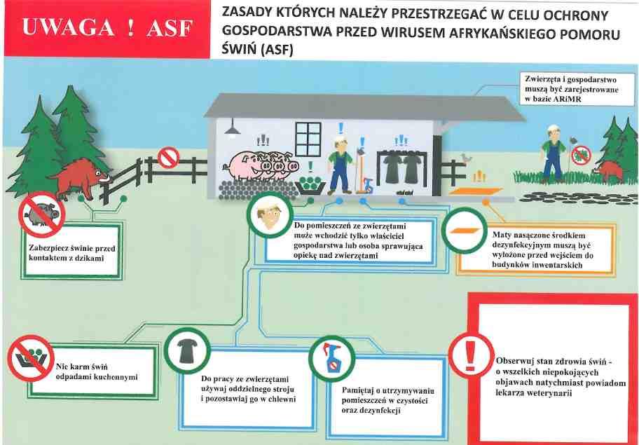 zasady postępowania ASF