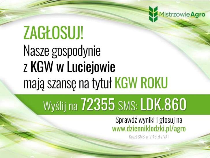 głosowanie na KGW w Luciejowie